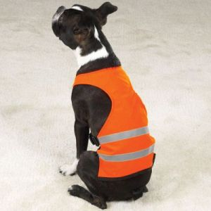 reflective dog gear