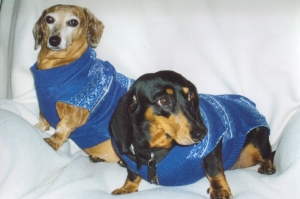 Gretchen and Emily, weiner dogs